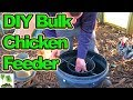 Diy Bulk No Mess Chicken Feeder
