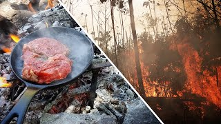 The REAL Reason Why The Amazon Rainforest Burned