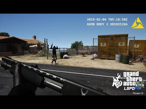 GTA V LSPDFR - Realistic Dashcam Shootout Footage (LSPD/LAPD