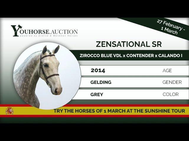 Zensational SR showing 7 years Spain