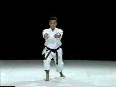 Saifa Shito Ryu