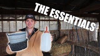 Everything You Need To Start Raising Bottle Calves!