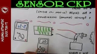 Sensor CKP magnetico de 2 cables (consejos de como probarlo)