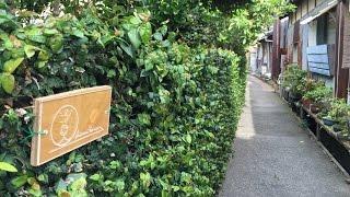 古民家ゲストハウス汐見の家愛媛県上島町佐島