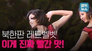 환영 예술공연에 등장한 북한판 레드벨벳