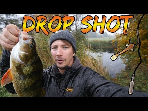 Fiskeri efter storaborrer med drop shot