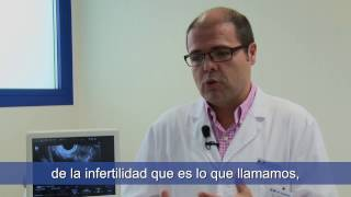 ¿Cuándo ir a HM Fertility Center y cuál es el procedimiento? - HM Fertility Center