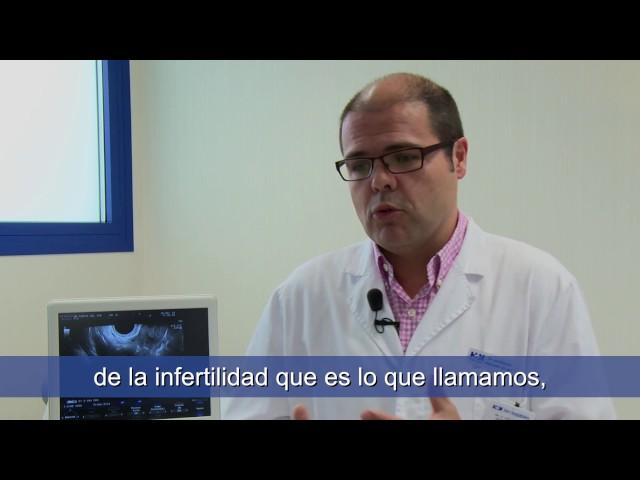 ¿Cuándo ir a una clínica de reproducción asistida y cuál es el procedimiento? - Oscar Collado Ramos