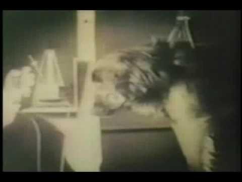 Ivan Pavlov- Classical Conditioning