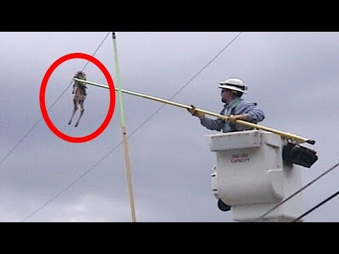 Most DANGEROUS Jobs In China!