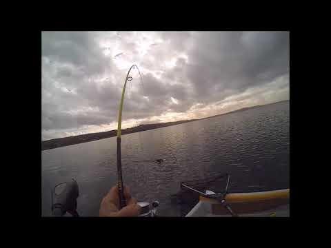 Russo che pesca in 2 pertica di ricerca di Volga