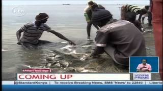 Eco-Journal: Sustainable fishing methods in Lake Turkana