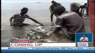 Eco-Journal: Sustainable fishing methods in Lake Turkana