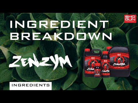 Ingredients Breakdown SHOGUN Zenzym