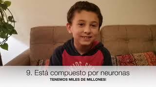 Taller Neurociencias