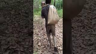 preview picture of video 'Ngebolang cari ikan dibelakang rumah sama anak tersayang'