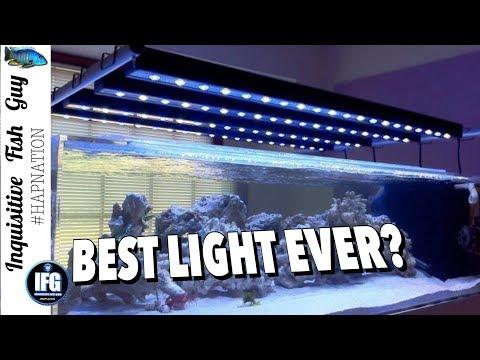 BEAMSWORK IS THE BEST AQUARIUM LIGHT EVER? MY REVIEW