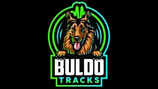 Buldotracks   Buldo Dance V 2
