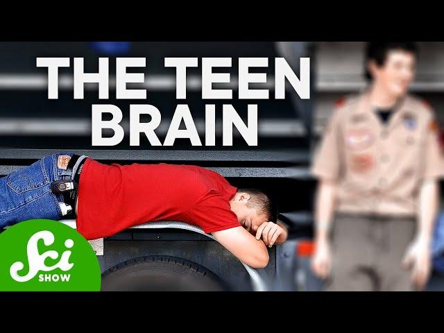 The Teenage Brain Explained