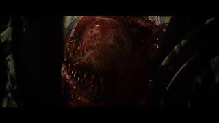Aliens Vs. Predator 2 : Requiem   Opening   Hunting Scene (HD)