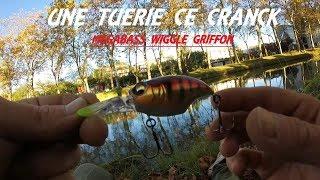 Megabass wiggle griffon