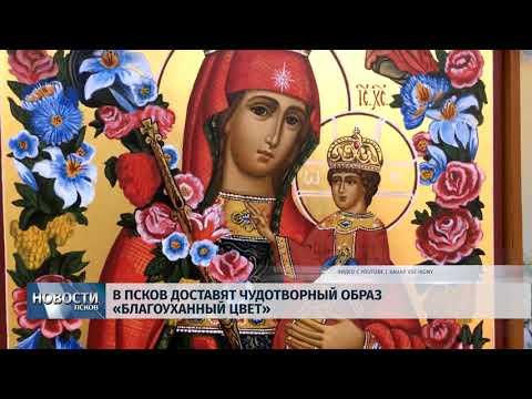 Новости Псков 11.11.2019 / В Псков доставят чудотворный образ «Благоуханный цвет»