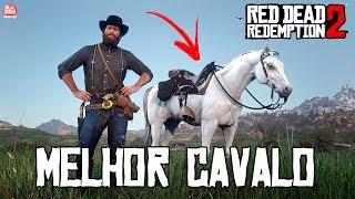 RED DEAD REDEMPTION 2 - MELHOR CAVALO GRÁTIS DO JOGO || COMO PEGAR e LOCALIZAÇÃO