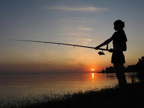 Рыбалка на Протве. Фидер