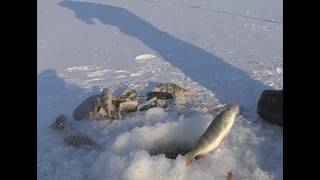 Рыбалка на красноярском водохранилище зимой