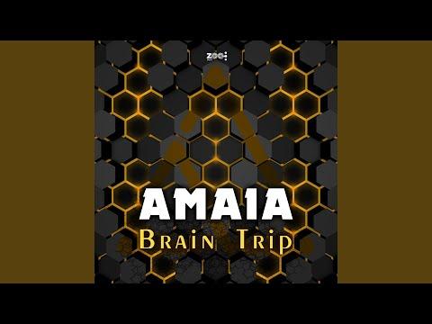 Brain Trip