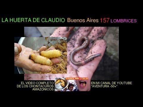 El tratamiento contra los parásitos intestinales por los medios públicos
