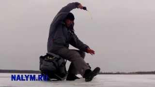 Рыбалка в борке сегодня последние отчеты