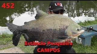 Frio na Estância Pesqueira Campos - Fishingtur na TV 452