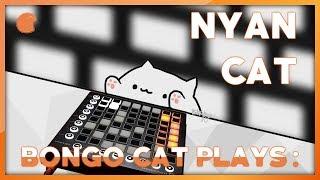 Bongo Cat Plays LaunchPad : Nyan Cat