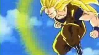 Dragon Ball - DBZ (ojos de tigre)