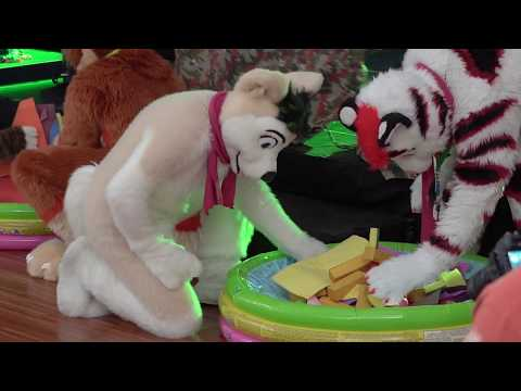Furvester 3 : Fursuit Games