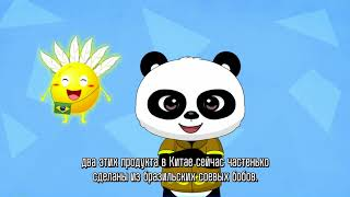 Путешествие панды по странам БРИКС