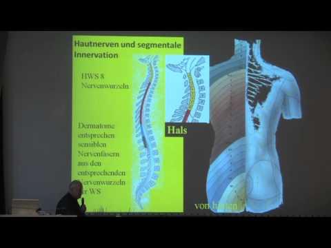 Nackenschmerzen und Schwindel Ursachen