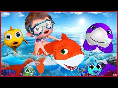 🔴  Baby Shark Dance |+ More Nursery Rhymes & Kids Songs | Songs For Kids | Banana Cartoons [HD]