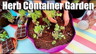 How to Plant an Herb Container Garden with Easy-to-Grow Herbs 🌱