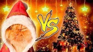 Кошки VS Новогодние елки!  Cats vs Christmas Trees  Лучшие новогодние приколы 2018 года!!