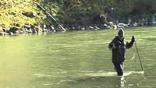 Ratte fur Huchen? Dunajec Fluss in Polen, Fliegenfischen Regenbodenforell