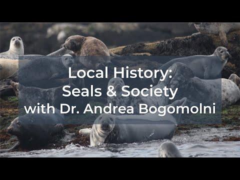 Local History: Seals and Society