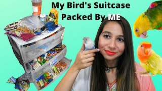 Tour ALL My Bird Supplies For My 11 Parrots! | Products For Birds