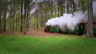 preview picture of video 'Waldeisenbahn Bad Muskau / small saxon forrest railway at Bad Muskau'