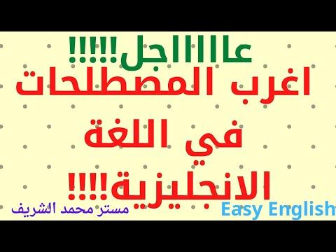 talb online طالب اون لاين اغرب 5 مصطلحات وتعبيرات قي اللغة الانجليزية مستر/ محمد الشريف