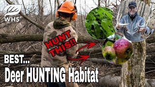 The Best Deer Hunting Habitat