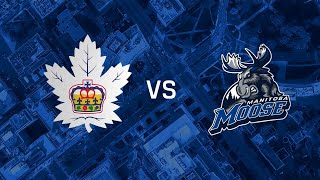 Moose vs. Marlies | May 6, 2021