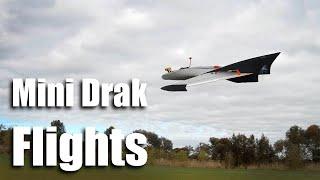 Mini Drak Flights