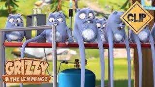 Les expériences scientifiques des Lemmings - Grizzy et les Lemmings